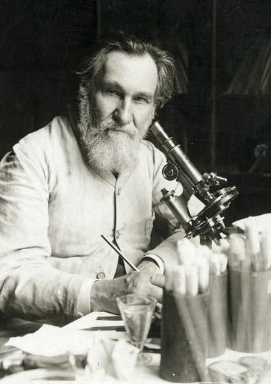 Élie Metchnikoff